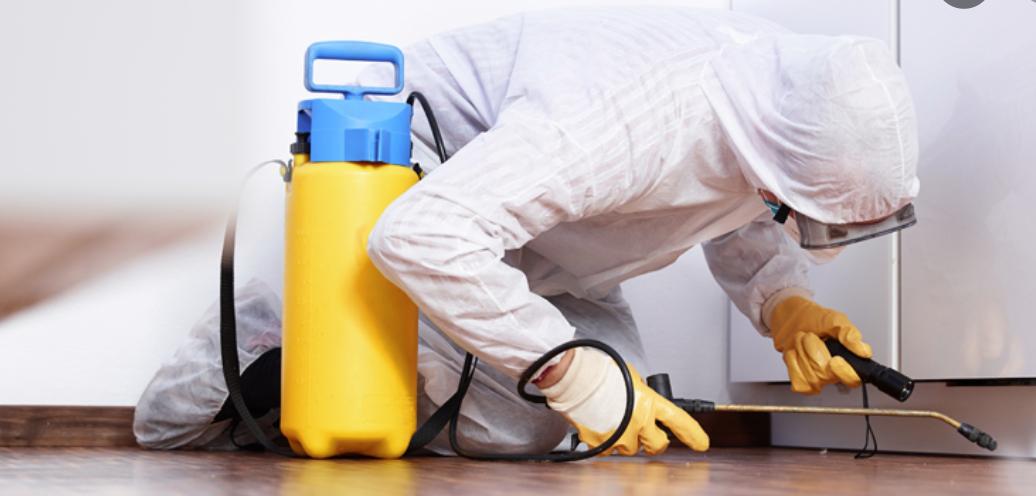 dezinfekce budov, kanceláří, bytů, provozoven